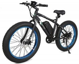 Ecotric Beach Snow Electric Bike
